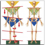 postural physiotherapy